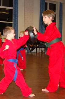 Freestyle karate picturescobras_0007.JPG