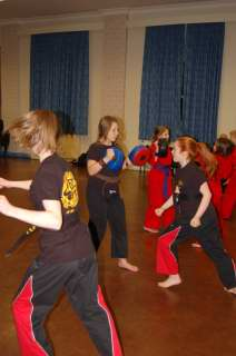 Freestyle karate picturescobras_0027.JPG