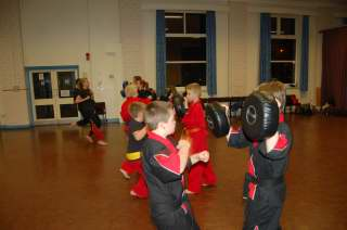 Karate pictures and photoscobras_0034.JPG