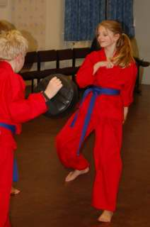 Freestyle karate picturescobras_0039.JPG