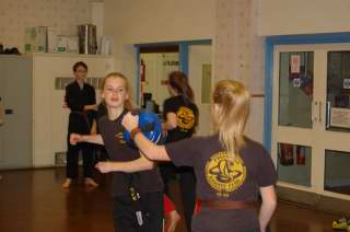 Freestyle karate picturescobras_0043.JPG