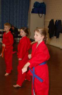 Karate pictures and photoscobras_0053.JPG
