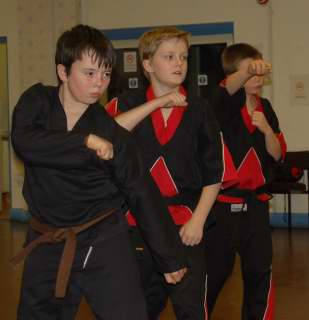 Freestyle karate picturescobras_0059.JPG