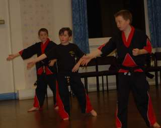 Karate pictures and photoscobras_0070.JPG