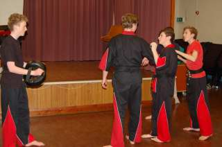 Freestyle karate picturescobras_0510.JPG