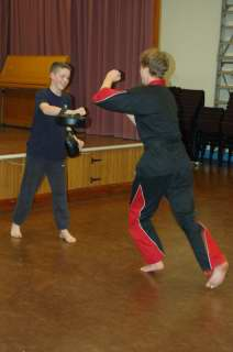 Freestyle karate picturescobras_0525.JPG