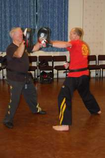 Freestyle karate picturescobras_0534.JPG