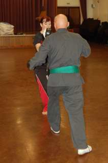 Freestyle karate picturescobras_0553.JPG